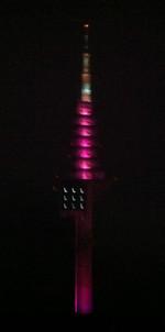 Pinkmax