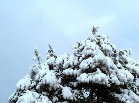 Endlich Winter