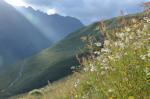 Workshop Kaukasus & Alpen
