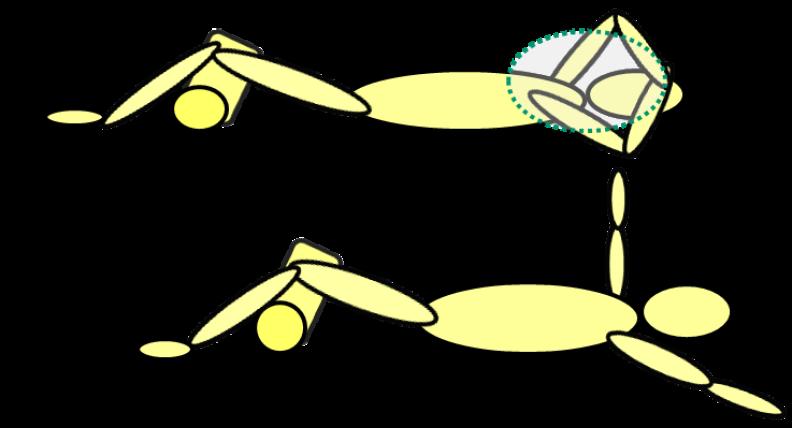 Dr. Wolff - Pectoralis minor stretch