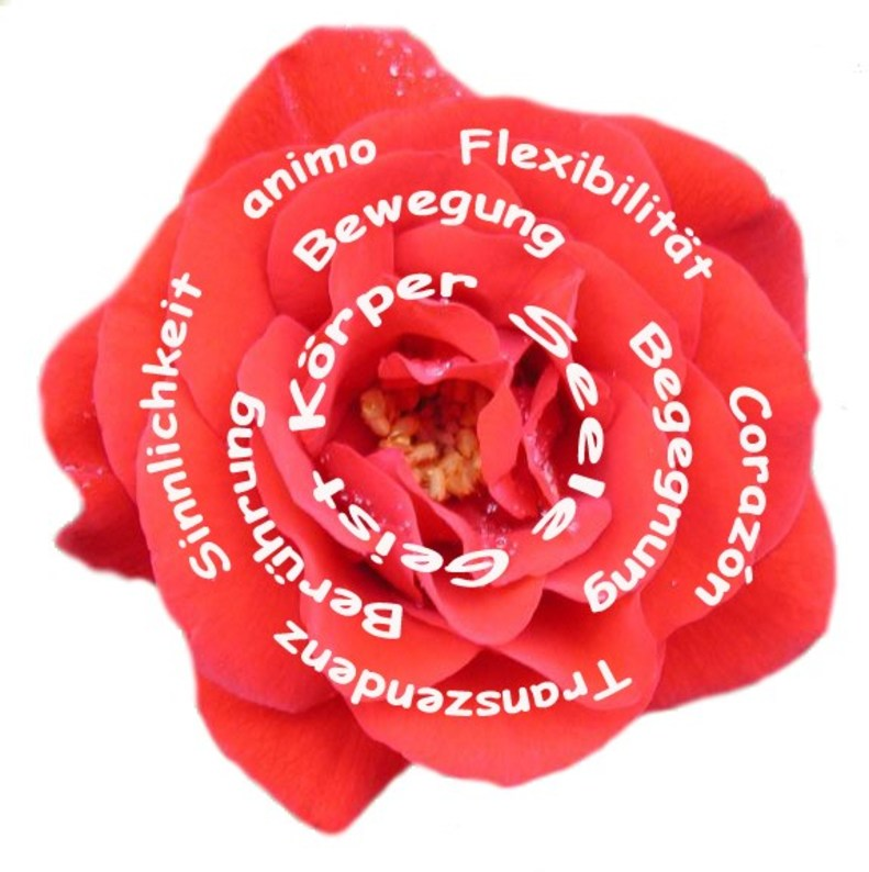 animoVida Blüte