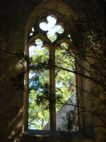 Kirchenfenster in Les Alyscamps bei Arles (F)