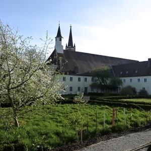 Klostergarten im Frühling