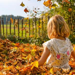 Herbst-Seminar Kinder im Oktober
