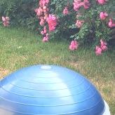 Bosu Balance-Trainer für vielfältige effektive Übungen