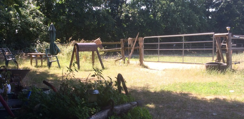 Reiten lernen in entspannter und geschützter Umgebung - der Hollerhof in Kleinbeeren