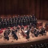 Hong Kong/Arcangelo 2019 ©Die Konzertisten