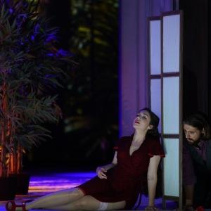 В роли Сюзанны в опере В. А. Моцарта «Свадьба Фигаро» (Фигаро - K. Krimmel, Государственный театр Гессена, Висбаден). Фото: Карл и Моника Форстер.